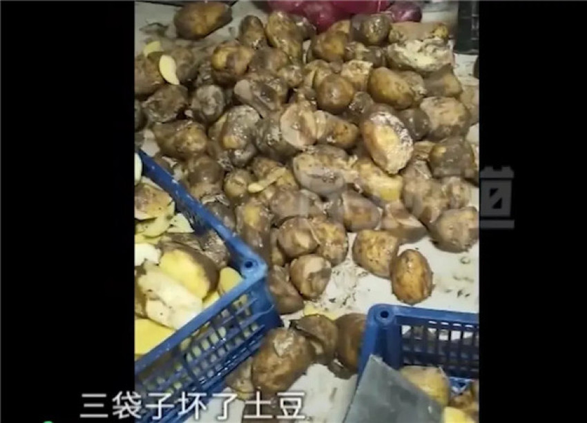 老板用烂土豆做黄焖鸡,厨师扔掉反被开除,知道真相的网友竖起了大拇指!